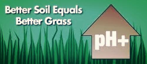 better soil equals better grass