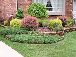tree and shrub feedings and disease control