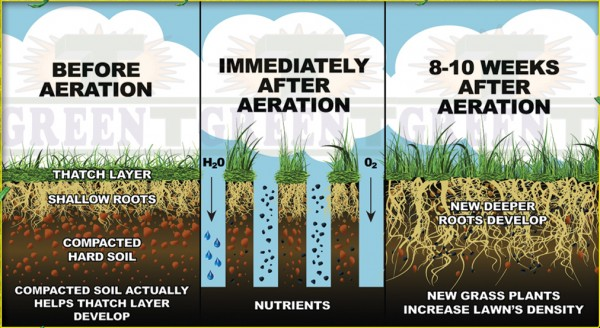 care aeration and seeding diagram