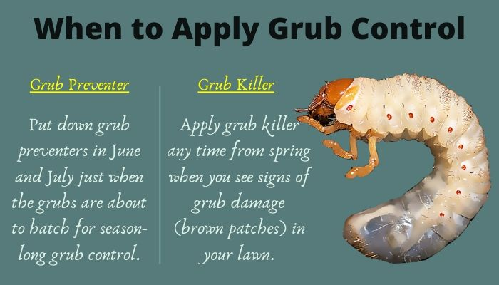 When to apply grub control